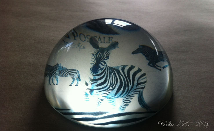 Zebra Glass