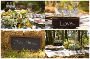 Country Wedding   Shy Fox Photography