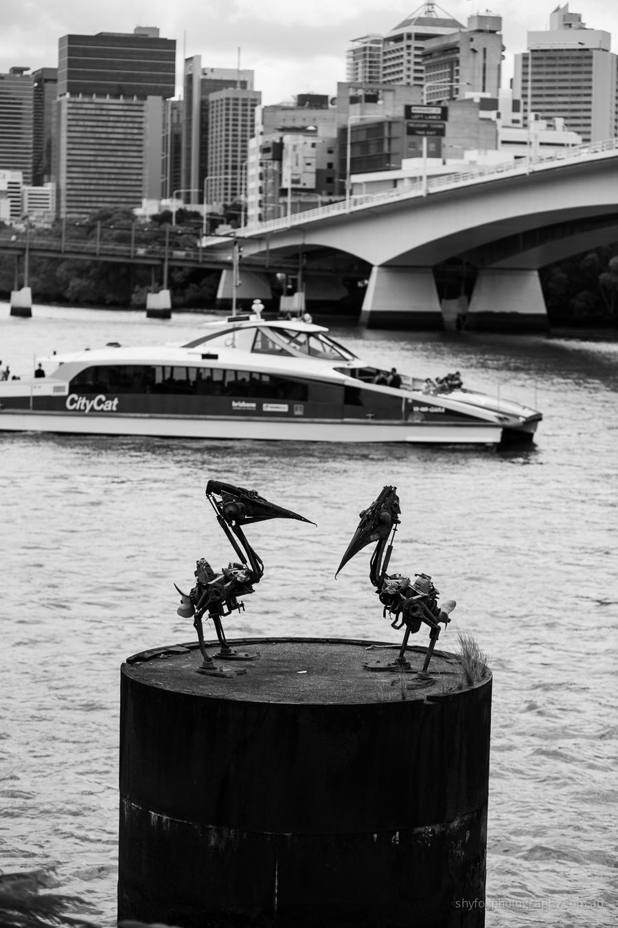 Brisbane Citycat and Pelican Sculpture