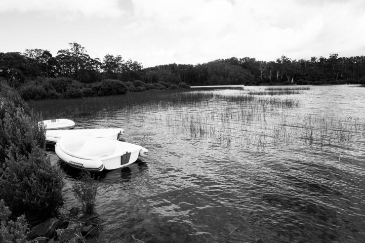 Drift boats. Derwent Basin, Lake St Clair, Tasmania