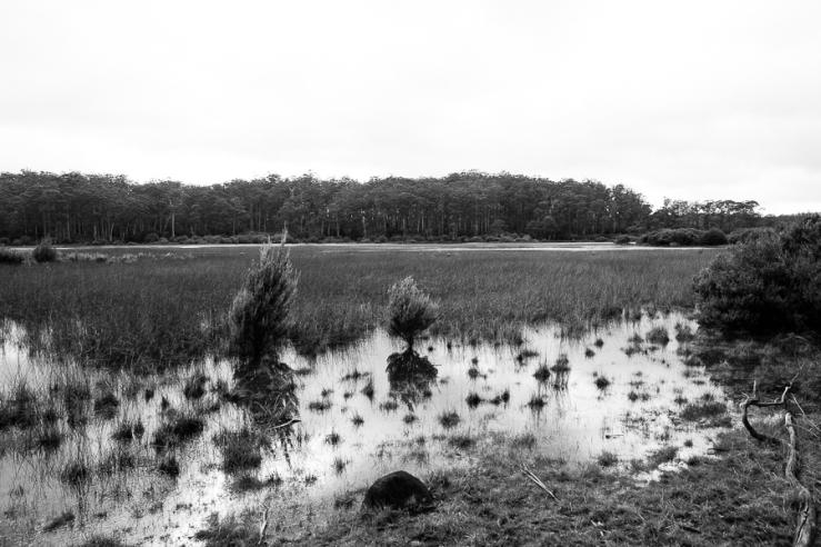St Clair Lagoon