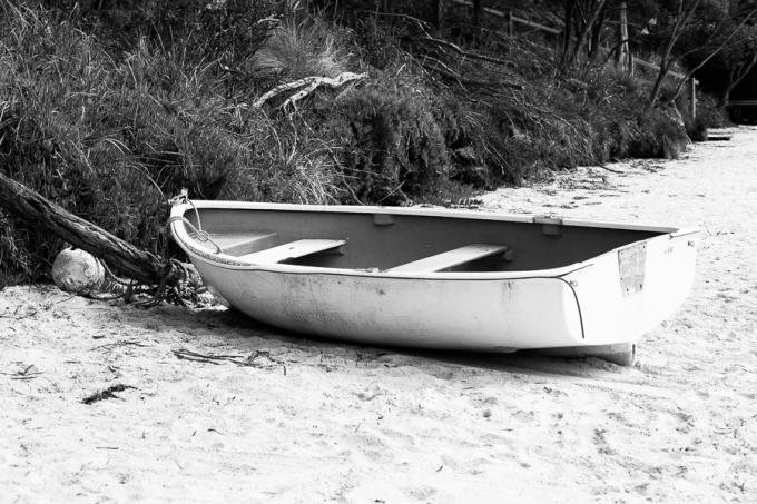Shy Fox Photography | shyfoxphotography.com.au